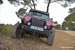 Jeepi-by-Bumperoffroad-light-18