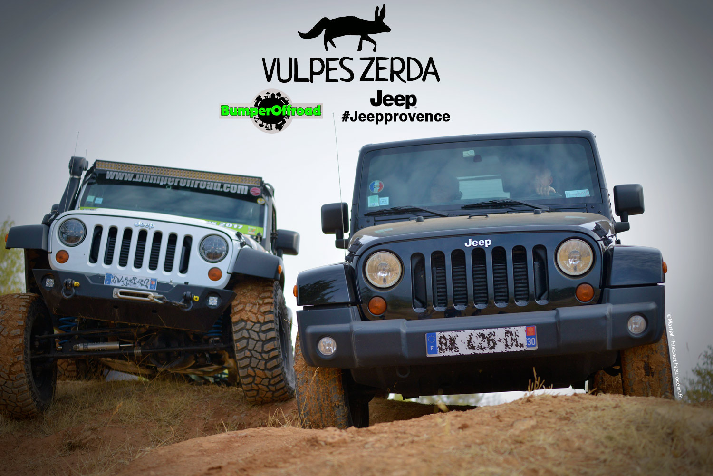 Vulpes-Zerda - ©Martial Thiebaut 2017 - Rallye des Gazelles 2018 - Bumperoffroad